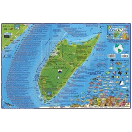 "Cozumel Dive Map -LAMINATED 18.5""x26.5"""