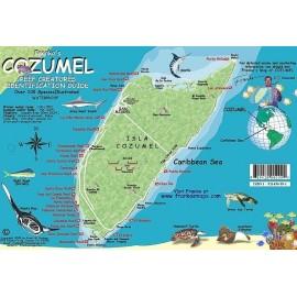 "Cozumel Reef Creatures 5.5""x8.5"" LAMINATED"