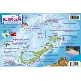 """Bermuda Reef Creatures 6""""x9"""" LAMINATED"""