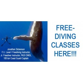 Free Diving Class - Breath hold Diving Certification Course