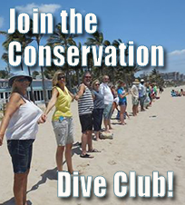Join The Conservation Dive Club