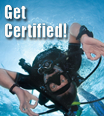 Get Scuba Certified Today! Click here to purchase the open water scuba certification course!